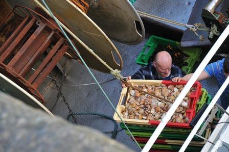 La pêche locale… Notre atout fraicheur et qualité !