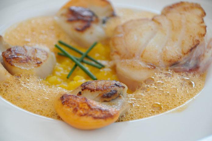 Plat à la coquilles, Restaurant de poissons Le Baligan