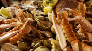 Différents fruits de mer